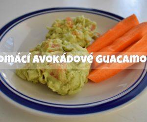 Domácí avokádové guacamole