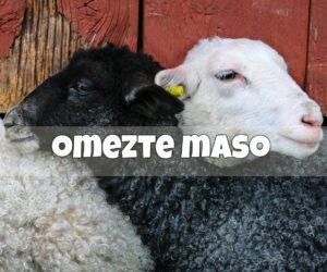 19) Omezte maso