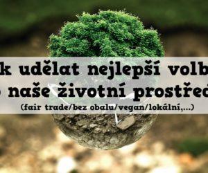 Jak udělat nejlepší volbu pro naše životní prostředí?